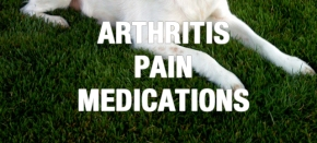 Arthritis Pain Medications