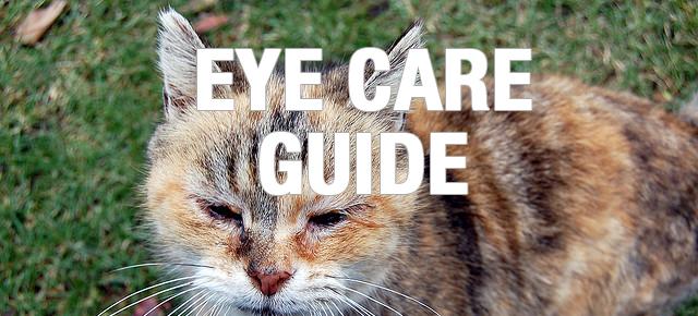 eyecareguide