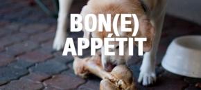 Bon(e) Appétit: Guide to All NaturalBones