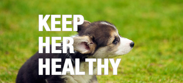 keep_her_healthy