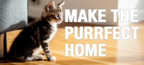 Kitten Checklist: How to Make the Purrfect Home
