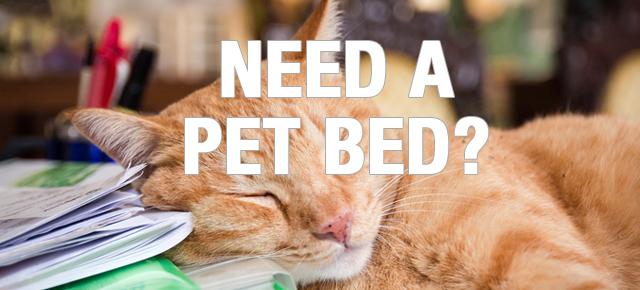 pet_bed_banner